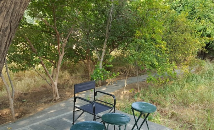Khem Villas: Vegetarian Feasting & Tigers in Rajasthan