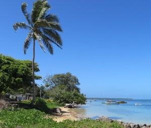 Uiha Haapai Tonga