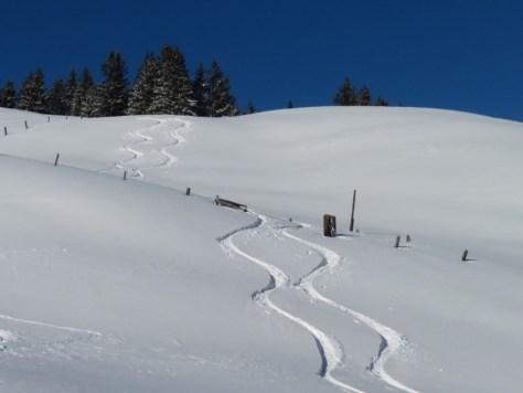 Ski mountaineering Grüsch