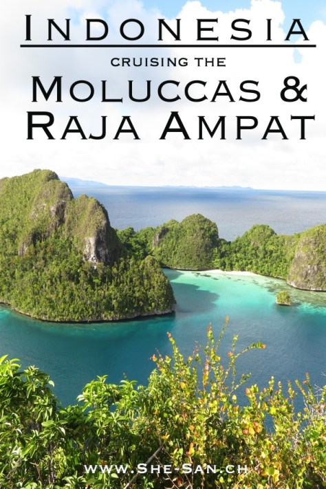 Indonesia Cruising the Moluccas and Raja Ampat, best diving spot ever