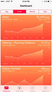 In review: much more walking in NY...