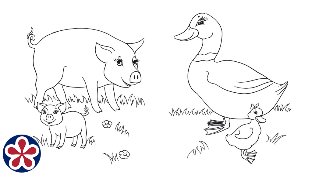 Coloring Pages Farm Animals And Their