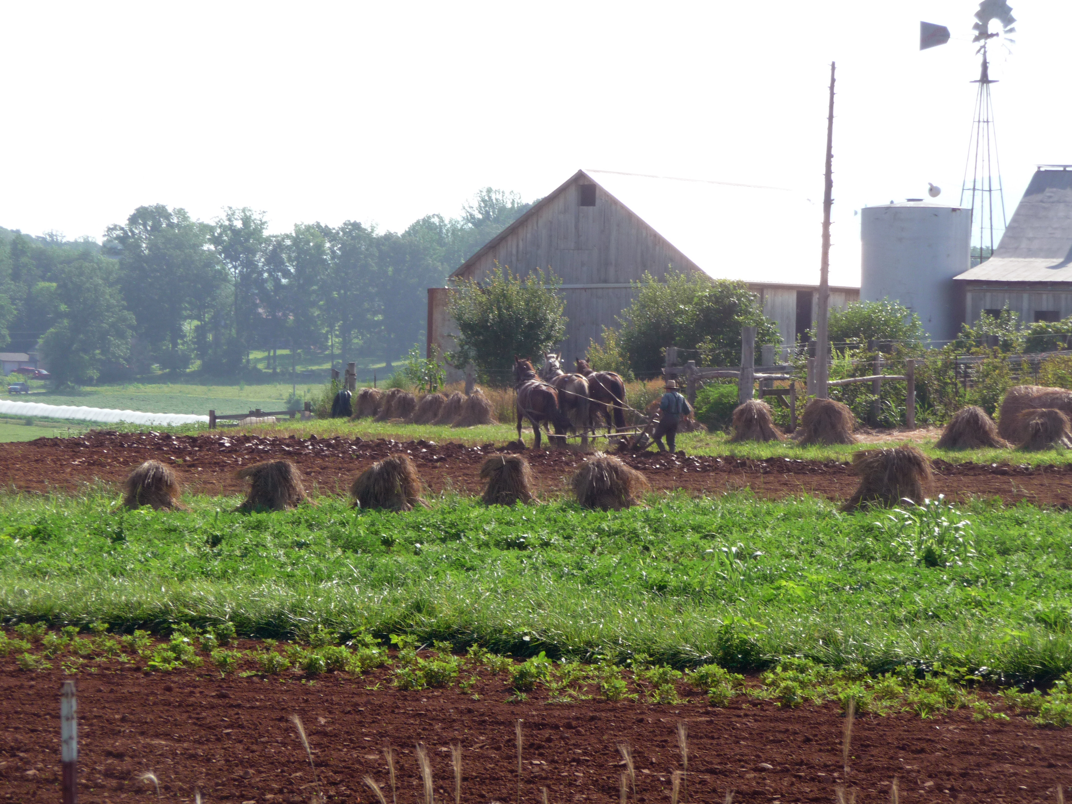 tractor-less farming