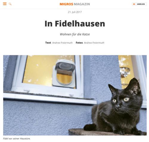 Andreas erste Erfahrungen beim Bloggen