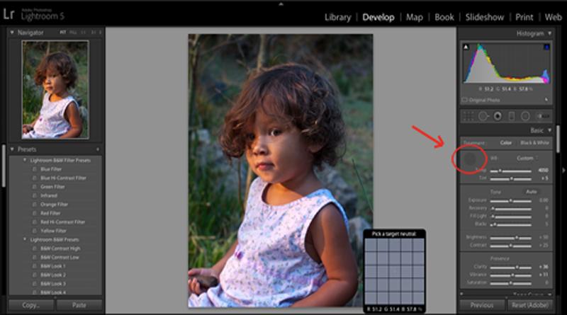 Photo Editing Workflow Tutorial
