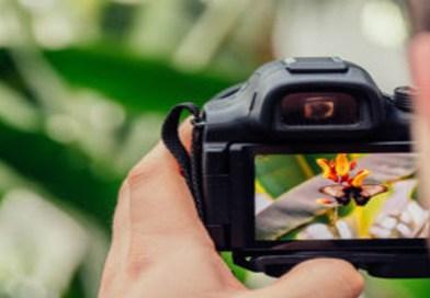 The Best DSLR Cameras of 2018
