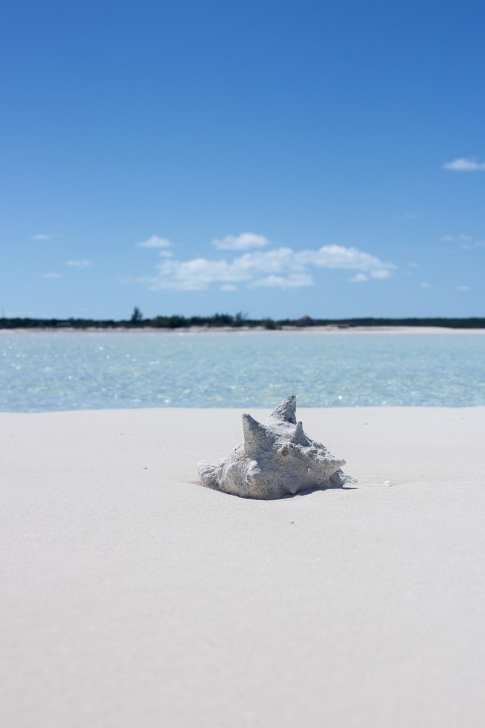 Top 5 Beaches in The Bahamas