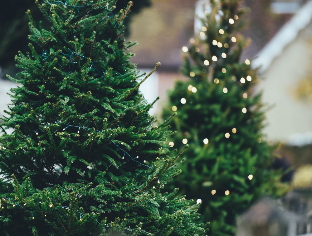 How to deal with stress and overwhelm during the holidays