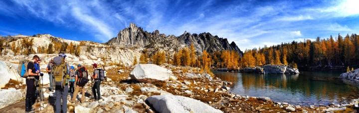 Golden Larch Landscape