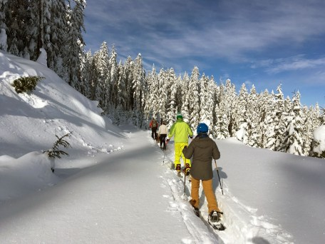 blue bird snowshoe on the off day