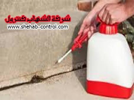 شركة مكافحة النمل الأبيض بالخرج