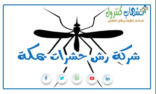 شركة رش حشرات بمكة