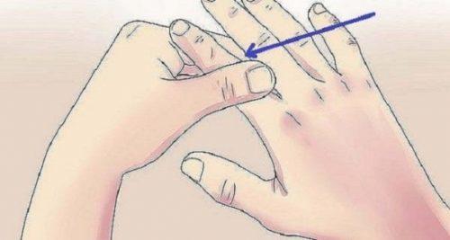 rahsia-jari-jemari-terhadap-organ-badan-jari-telunjuk