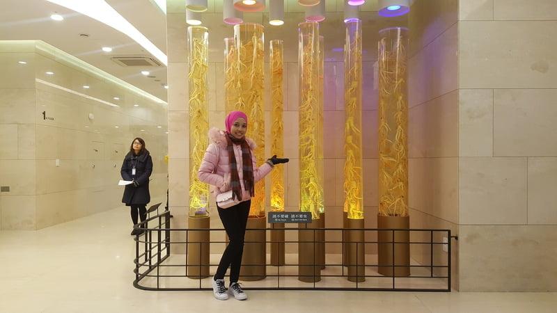 KOREA TRIP GYEONGBOKGUNG PALACE, LOVE LOCKS N SEOUL TOWER, NAMDAEMUN MARKET, MYEONG-DONG (278)