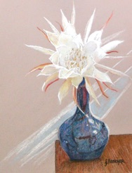 Before the Dawn - Night Blooming Cereus