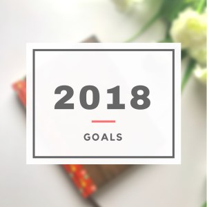 2018 Goals + 2017 Recap- sheisnaturallybronze