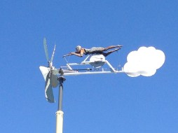Wind Swimmer Weather Vane copyright Shelagh Donnelly