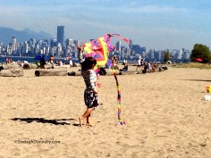 Fly a Kite Copyright Shelagh Donnelly