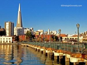 San Francisco 0797 Copyright Shelagh Donnelly