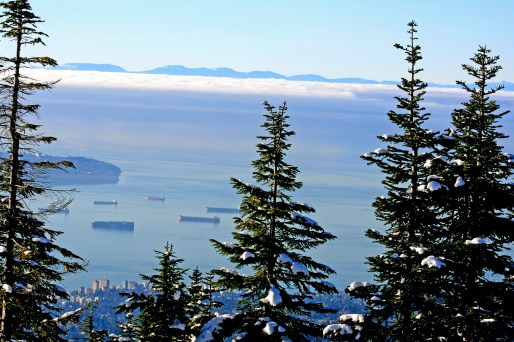 Vancouver from Grouse 2668 Copyright Shelagh Donnelly copy
