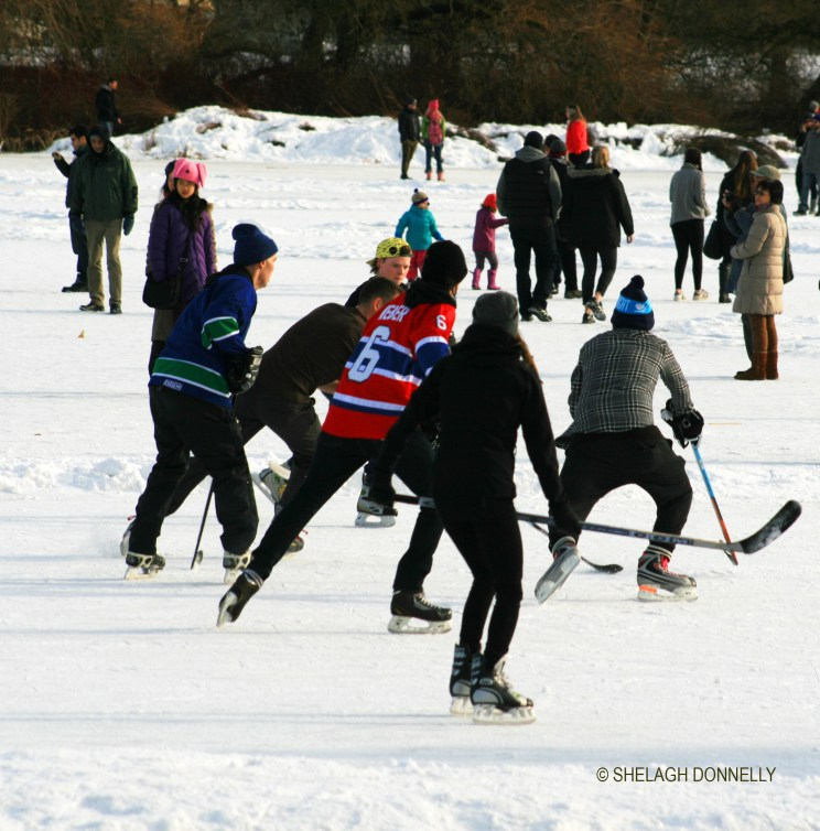 a-winters-scrimmage-3423-copyright-shelagh-donnelly
