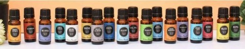 My choice for non mlm essential oils shelemah Edens garden essential oils coupon