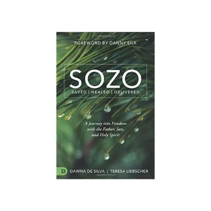 Sozo by Dawna De Silva and Teresa Liebscher