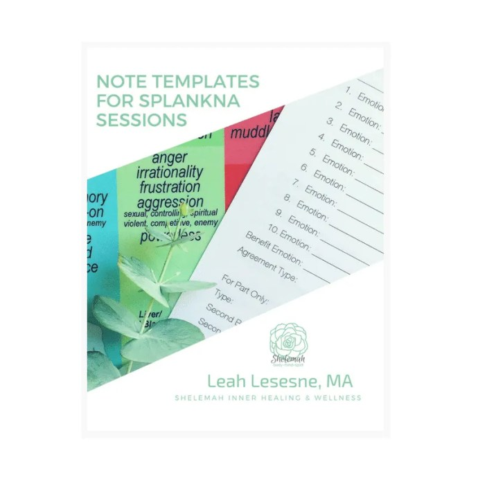 Note Templates for Splankna Sessions – All Levels