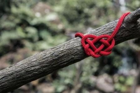 soul tie heart knot