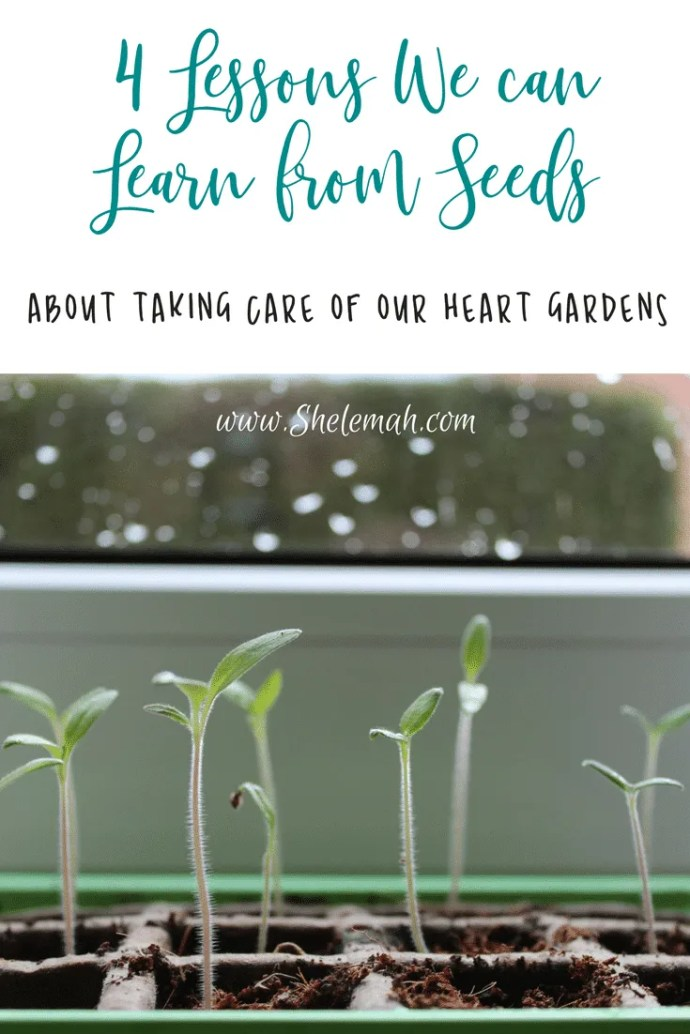 Four lessons we can learn from seeds about taking care of our heart gardens #selfcare #innerhealing #gardening