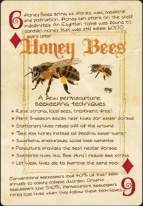 honey bee playing card