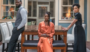 'Queen Sugar' TV Review: Skin Transparent