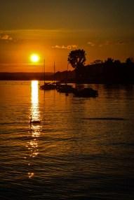 Sipplinger Sonnenuntergang