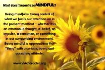 7-19-mindful