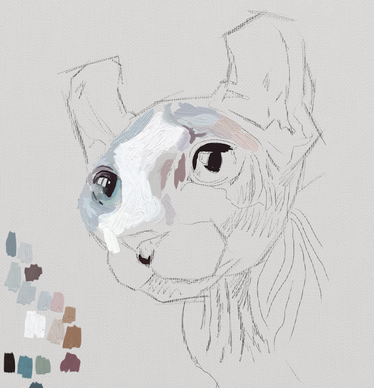 Painting a cat step by step in ArtRage featuring Remy the Gargoyle Sphynx hairless cat step 1