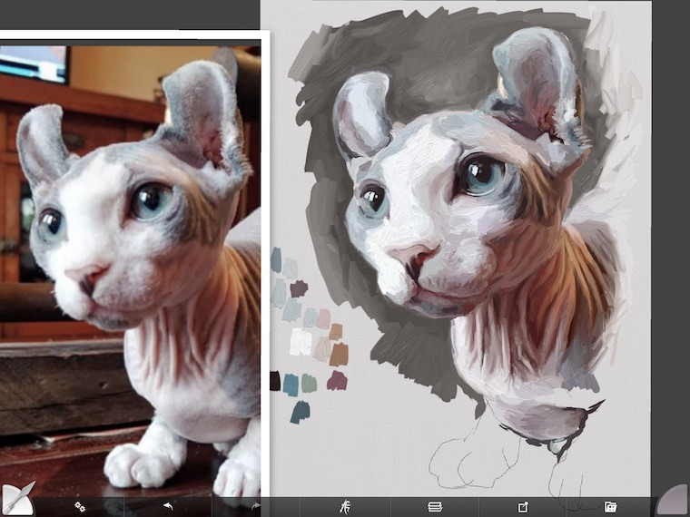 Painting a cat step by step in ArtRage featuring Remy the Gargoyle Sphynx hairless cat