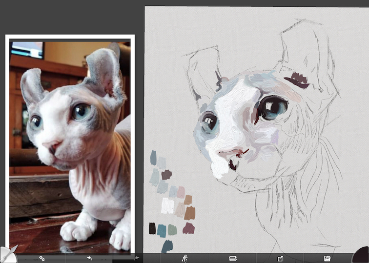 Painting a cat step by step in ArtRage featuring Remy the Gargoyle Sphynx hairless cat step 3