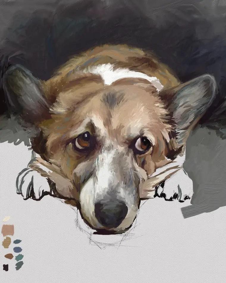 Painting A Corgi In ArtRage - 9 Helpful Dog Portrait Tips