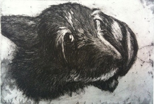 Painting black fur Beardsley ingaglio dog drawing cairn terrier rat terrier