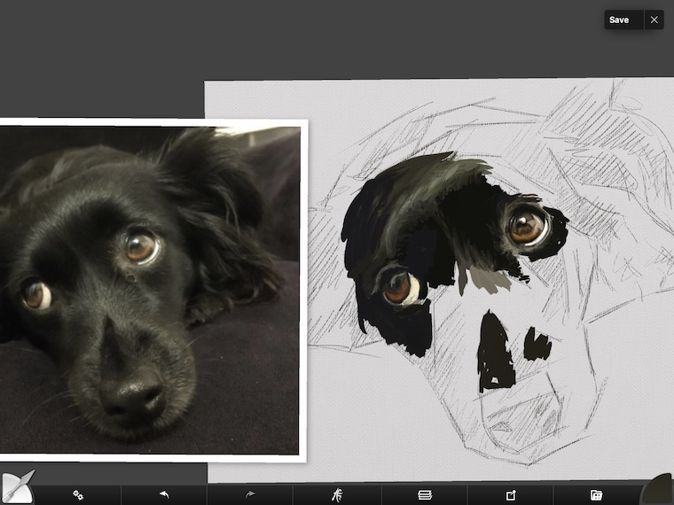 step 4 8 tips for painting black fur traditional and digital ArtRage step-by-step tutorial