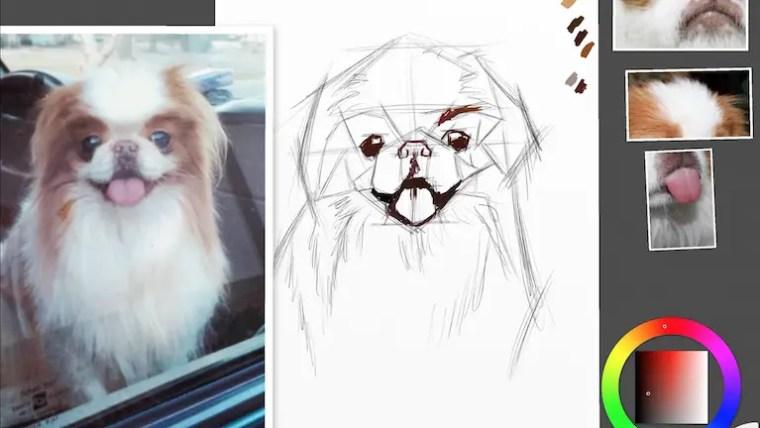 Step 2 painting a dog portrait