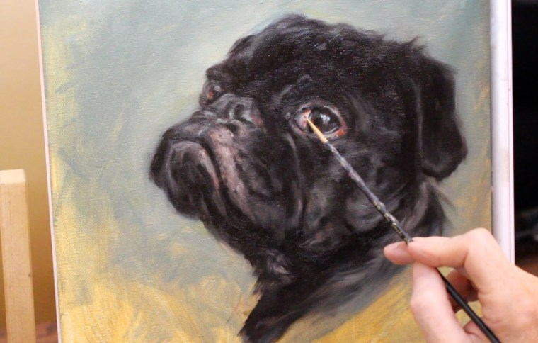 Step white of eye black pug dog oil painting shelley hanna tutorial how to