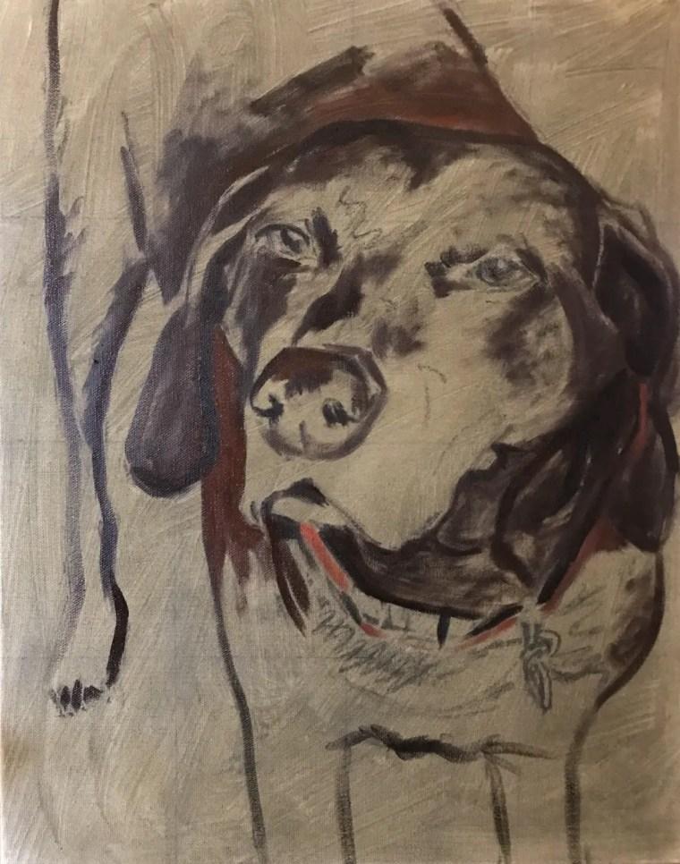 senior dog portrait dark block