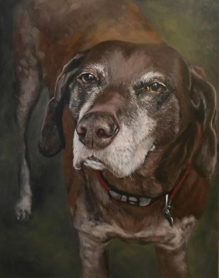 Duke Senior Dog Portrait Final