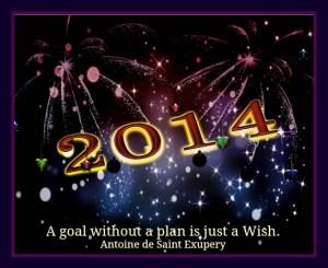 2014 Goal Wish
