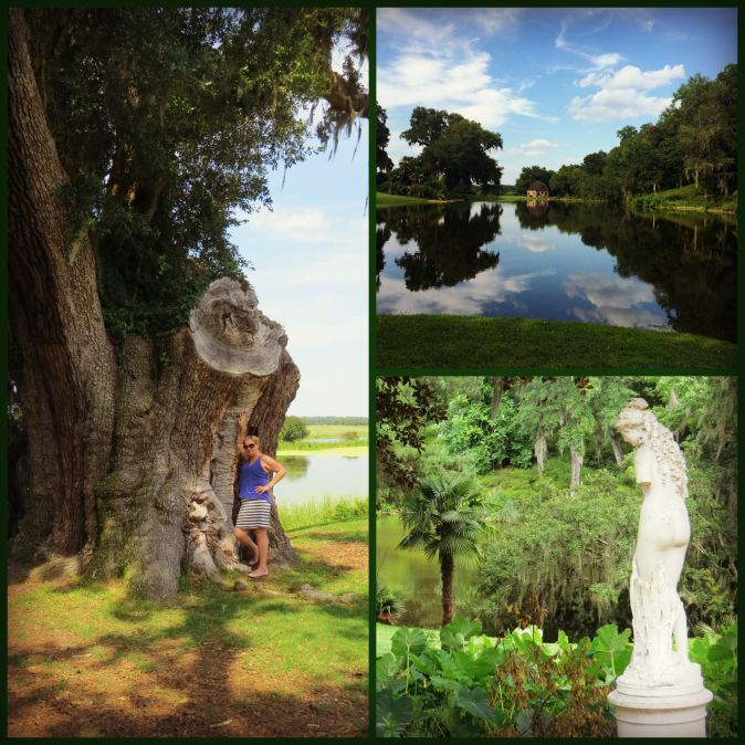 Middleton Place Collage 2