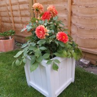 DIY Wooden Planter for your Doorstep