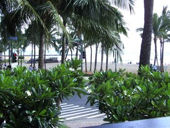 A K Waikiki 1 W