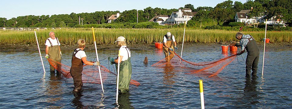 BARS volunteers setting nets
