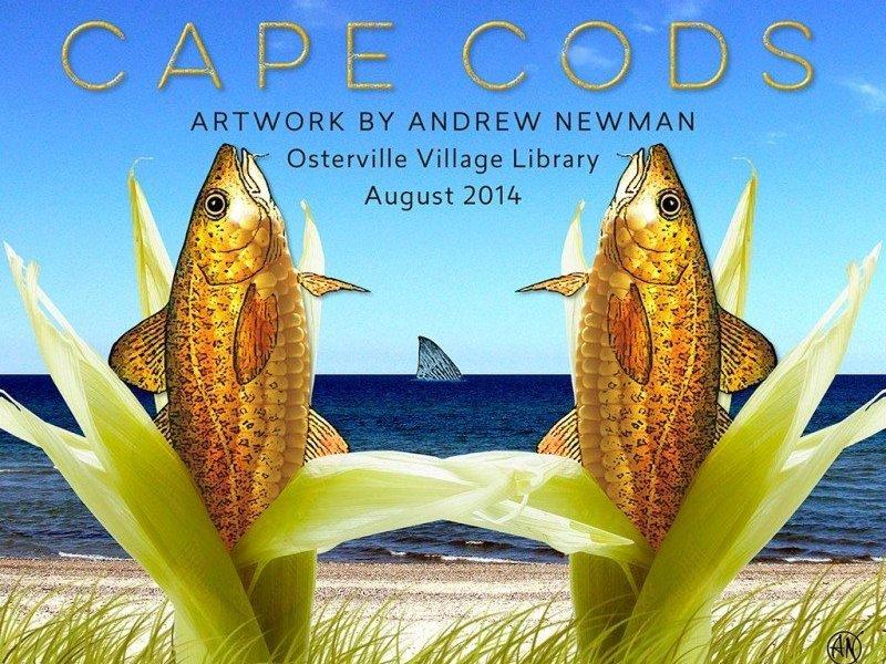 CAPE CODS